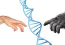 paleogenetics neanderthal